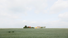 Living in the Fields (panfot_O (Bernd Walz)) Tags: field fields agriculture living house building farm farmland farmhouse rural countryside landscape space vastness solitude brandenburg havelland germany transformedlandscape artificiallandscape manufacturedlandscape fineart