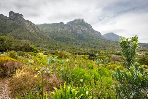 Kaapstad_BasvanOort-4