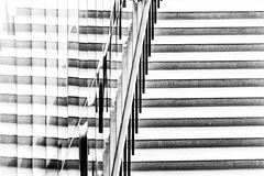 Stairs (Rnout) Tags: usa sanfrancisco deyoung bw