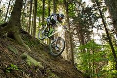Watto (Hagbard_) Tags: bike mtb mountainbike trailbike ride enduro czech rychleby sport tour outdoor outside trailriding wood fun life friends beautiful mtbisokay nature photography rychlebskéstezky