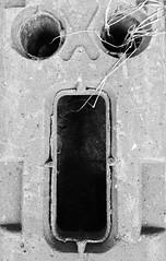 """Scream"" (seanwalsh4) Tags: scream macromondays face pareidolia seanwalsh unusual fright horror macro under3inches scare jump nasty hmm edvardmunch bw darkfeelings scared frightened shiver shake dead death dire mental nutcase crackers"
