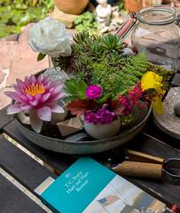 my little planet (bornschein) Tags: green germany garden home book flower