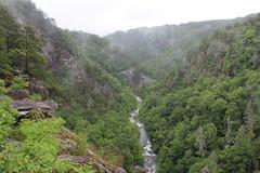Tallulah Gorge (Thomson20192) Tags: rabun county georgia 2017 gorge state park