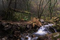 Ruta do Rio San Martiño (jojesari) Tags: ar117g rutadoriosanmartiño riosanmartiño meis pontevedra galicia otoño jojesari suso explore