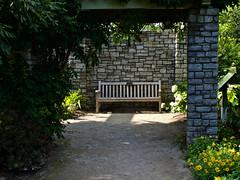 Arboretum june 2017 (alfredo_tomato) Tags: lexingtonky olympusem10 lumix25mm17 flowers