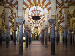 The Columns of Córdoba (RobertCross1 (off and on)) Tags: 20mmf17panasonic catholic em5 europe islam omd olympus spain unesco worldheritagesite architecture cathedral church city columns interior medieval mezquita mosque religious urban córdoba españa mezquitacatedraldecórdoba andalucía andalusia alandalus