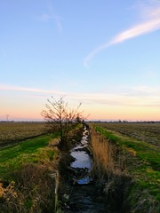 IMG_20170225_180357 (storvandre) Tags: storvandre lombardia lombardy countryside campagna nature landscape road zibido milano parco agricolo