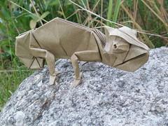 Chameleon 2017 by Artur Biernacki (Arturori) Tags: chameleon arturbiernacki art origami