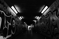 Going Underground (Jungleland Is Home) Tags: blackandwhite monochrome candid underground solitude streetphotography street tunnel underpass graffiti fear dark light shadows