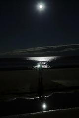 Full moon / Estaleiro Beach (alestaleiro) Tags: praia praiadoestaleiro estaleiro nite night noche nocturna luna lua moon fullmoon lunallena sc brasil brazil balneáriocamboriú alestaleiro