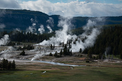 Valley of Smoke (John Nefastis) Tags: nationalpark national park yellowstone montana wyoming usa travel field valley green forest geyser geothermal steam old faithful