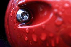 in the summertime... (maotaola) Tags: macromondays red sweat drops rojo perladoensudor effort macrofotografía macro dripsdropsandsplashes detail perfectcomposition ruleofthirds wet