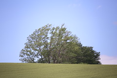 嵐 画像28