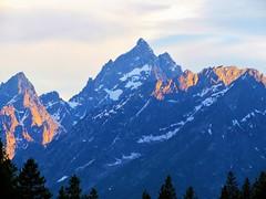 Grand Teton peak (thomasgorman1) Tags: mountains peaks peak sky park nationalpark grandtetons tetons teton wyoming valley cathedral national trees pinetrees landscape canon sunlight