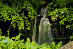 Waterfall and nature. (ost_jean) Tags: waterfall nature natuur plants tamron sp af 17 nikon d5200 ostjean