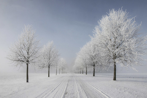 """Winter in Sweden • <a style=""""font-size:0.8em;"""" href=""""http://www.flickr.com/photos/150102734@N08/34021212944/"""" target=""""_blank"""">View on Flickr</a>"""