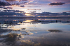Reflections XIV. (dasanes77) Tags: canoneos6d canonef1635mmf4lisusm tripod landscape seascape cloudscape waterscape sky heaven clouds longexposure calm tranquility reflections shadows birds nets canes albuferaofvalencia valencia mirror naturallight sun sunset blue hour
