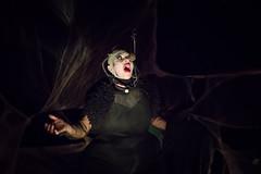 Alma, la viuda negra (Juan Ig. Llana) Tags: leioa bizkaia euskadi umoreazoka espectáculo artista actriz teatro escenario disfraz freak monstruo viudanegra canto oscuridad araña telarañas zb