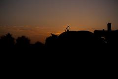 Farmer's Delite (niKonJunKy22) Tags: farm farming tractor sunset sun night silhouette dark darkness photography art nikon d700 ngc woodenshoe tulips field black light