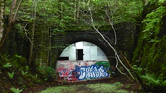 Western  end  of Thurgoland Tunnel    (double bore)  May 2017 (dave_attrill) Tags: thurgoland tunnel western portal closed graffiti deepcar penistone station building great central railway electrified woodhead sheffield victoria manchester picadilly 1970 1955 stocksbridge engine transpennine upper don trail wortley wadsley neepsend dunford bridge oxspring barnsley junction huddersfield allweather cycleway bridleway footpath remains stopping electrification gantry concrete support oughtibridge oughty platform overgrown stationmasters house ticket office bullhouse green millhouse hazelhead 1983