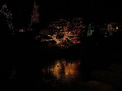 38 Christmas Lights & Ice (megatti) Tags: christmas christmaslights decorations lahaska pa peddlersvillage pennsylvania