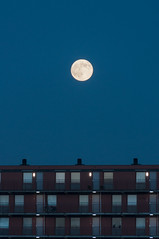 Full moon rising (glukorizon) Tags: apartmentbuilding asfarastheeyecansee avond blauweuur blauweuurtje bluehour celestialobject evening flatgebouw maan odc odc1 ourdailychallenge