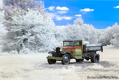 Tams Truck in a new light... (Brian M Hale) Tags: tams old truck 1951 antique infrared color halespectrum ir infra red filters lifepixel canon 6d modified camera photoshop newengland new england west boylston ma mass massachusetts brian hale brianhalephoto different unique vintiage rt140 rt 140 route temple st street iconic ford 1930 1931 dumptruck dump