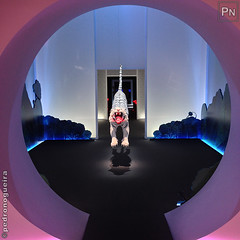 Robert Wilson exhibition 6/10 (Pedro Nogueira Photography) Tags: pedronogueiraphotography pedronogueira photography veneza venezia venice biennaledivenezia robertwilson art culture exhibition mobilephone iphone5 telemóvel iphoneography