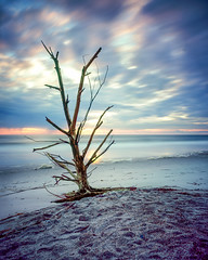 Hurricane Matthew 4x5 - Velvia 100 (magnus.joensson) Tags: usa american florida beach sunrise wanderlust cameras travelwide 90 schneider angulon 90mm fuji velvia 100 large format 4x5 epson v800 scan visitusa e6 littlestop 81a