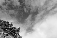 LANDSCAPE_BW_03 (marcopedrini) Tags: blackwhite biancoenero landscape paesaggi conca prà val pellice fujifilm xpro1 xf23 mountain montagna piedmont piemonte lightroom5