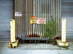 img416 (dmacfoto) Tags: ga645 analog 120film mediumformat portra expiredfilm hamilton film