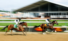 2017 Panning Motion Blur Shots at Pimlico Race Track (14) (maskirovka77) Tags: memorialday pimlico dirt filly furlong racehorse stallion thorougbread turf yearling