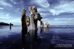 Sandsend (ScudMonkey) Tags: sandsend c2017paulbradley groyne posts wood beach coast sea convertedcanon 30d seascape landscape whitby falsecolour 720nm efs1022mmf35 north yorkshire digitalinfrared