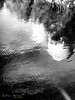 [ #144 :: 2017 ] (Salva Mira) Tags: pantà pantano reservoir amadorio reflejos reflexes reflections abstract abstracte abstracto aigua agua water blancinegre blancoynegro blackandwhite black white blanc negre blanco negro salva salvamira salvadormira