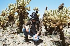 Cholla (carlos71786) Tags: gasmask gasmasks joshuatree joshuatreenationalpark cholla chollacactus chollacactusgarden california southerncalifornia socal desert nature cactus cacti deserts film filmisnotdead 35mm color kodak kodakultramax canon canonae1 ae1