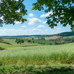 Kraichgau-Landschaft im Mai - 170521 thumbnail