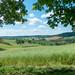 Kraichgau-Landschaft im Mai - 170521