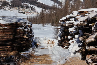 engadin_switzerland_016