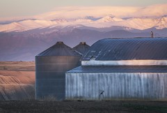 High Plains to High Peaks - Weld County, Colorado (www.rootsstudiophoto.com) Tags: farm frontrange ranch barn agriculture silo field hills sunrise clouds indianpeaks continentaldivide plains highplains colorado weldcounty johnstown frontrangephotography ranchphotography landscapephotography landscape