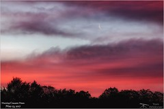 Morning Crescent Moon - May 23, 2017 (Tom Wildoner) Tags: tomwildoner leisurelyscientistcom leisurelyscientist moon crescent morning sun clouds trees may 2017 hickoryrunstatepark pennsylvania purple red pink colorful canon canon6d tripod astronomy astrophotography astronomer sky nature environment