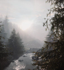 """""""Foggy morning"""" (L1netty) Tags: morning fog trees thevanishingofethancarterredux screenshot games gaming reshade pc theastronauts nature landscape outdoor sun color 4k hills bright scenery videogame"""
