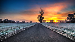 winter morning (bocero1977) Tags: athmosphere street frost meadow snow morning road tree way alone trail sky white view path dawning landscape sunset germany mood outdoor weather clouds blue winter nature scenic field cold colors trees straight light wide frozen