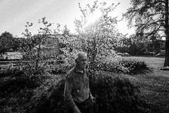 Jean-Marie et ses pruniers 13 (C'est géant!) Tags: humain rencontre jeanmarie bergeron simon emond fleur alcool vin prune verger metabetchouan saguenaylacsaintjean lacsaintjean saguenay