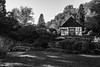 Waldhaus-1 (FSR Photography) Tags: bw blackandwhite blackwhite sw schwarzweis schwarzweiss canon canon400d canondslr wald forrest nature natur shadows schatten fsr fsrphotography