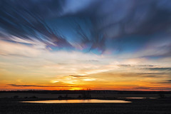 Sunset Scratches (Matt Molloy) Tags: mattmolloy timelapse photography timestack photostack movement motion colourful sky sunset scratches clouds trails water pools reflection trees field seeleysbay ontario canada landscape lovelife