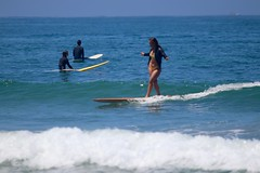 IMG_9453 (palbritton) Tags: surf surfing surfer ocean waves beach surfergirl sea