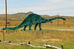 Corrective Lenses (David K. Edwards) Tags: dinosaur roadside route66 glasses spectacles comic brontosaurus statue wrongway arizona hffohyeah