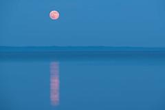 _DSC0686 (phatwhistle) Tags: moon reflection leelanau michigan sky night water greatlakes northernmichigan blue fullmoon