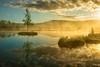 Chalupska slat (toporbike) Tags: chalupskaslat sumava morning sunrise fogy nicemorning goodlight bluesky nationalpark landscape water