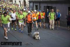 Francigena Marathon 2017 (Camminareweb) Tags: camminare francigena viafrancigena francigenamarathon acquapendente montefiascone bolsena